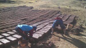 Preparing_adobe_bricks_to_build_the_Alma_library[1]